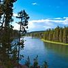 Yellowstone River, Hayden Valley