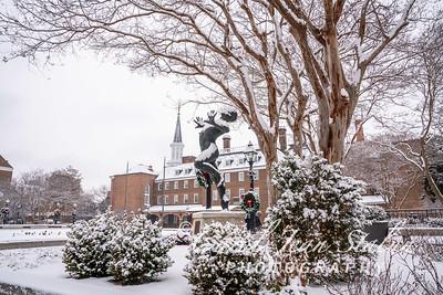 Snow Day 14