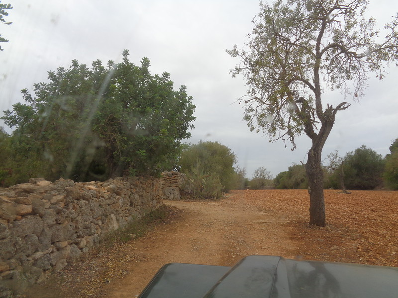 coming up to the entrance of the drive