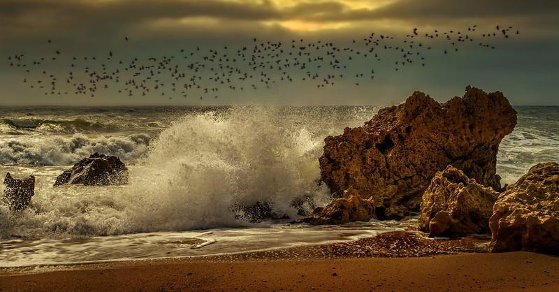 The Algarve 74.jpg
