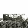 F0237 <br /> De bollenschuur van B & K – Bulbhorst langs de Hoofdstraat, ter hoogte van de Wasbeekerlaan. Op de achtergrond de watertoren, toen nog in bedrijf. De bollenschuur is waarschijnlijk eind jaren '60 gesloopt en heeft plaats gemaakt voor nieuwe bedrijfsgebouwen. Het bollenland op de voorgrond heette De Goudmijn, eigendom van de fa.  Zandbergen-Ter Wegen. Vanaf 1977 is er bebouwing komen te staan.