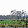 F3848<br /> De bossage van de vroegere vuilstortplaats, nu al een paar jaar plantsoen met een uitkijkpost.