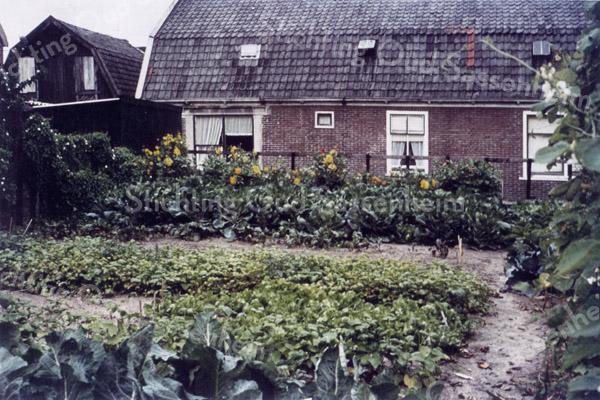 F0174 <br /> Drie van de zes huizen die aan de Boschlaan stonden, gezien aan de voorkant. De huizen waren eigendom van de Hervormde Diaconie en zijn in de loop der jaren veranderd, zoals het vergrote raam van het linkerhuis. De zwarte schuur links op de achtergrond is de bollenschuur van Jo van Waardenburg. De groentetuin werd gehuurd van Stelma, de vroegere bakker. Foto: ca 1975.