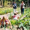 F2583<br /> De schooltuinen in park Rusthoff. Rechts Helma In der Rieden. Foto: 2004.