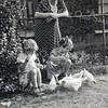 F3718<br /> Augustus 1943 : kippenvoeren op de werf achter het woonhuis Hoofdstraat 234B  van de fam. Lascaris.<br /> Ria en Tiny Lascaris en moeder kijkt toe.
