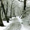 F2476<br /> Park Rusthoff, gelegen in het centrum van Sassenheim in wintertooi. Foto: 2001.