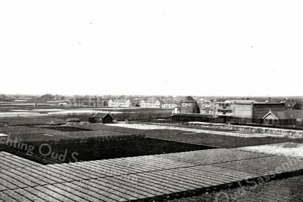F0965 <br /> Gezicht over de bollenvelden. Op de achtergrond is de romp van de molen van Speelman zichtbaar en rechts daarvan de bollenschuur en kantoren. In de verte staat een drietal huizenblokken aan de overkant van de Zandsloot.