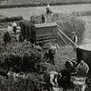 F3496<br /> Bollenwerkers op het land. Locatie onbekend.