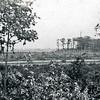 F0171 <br /> Uitzicht op het bos van Ter Leede vanaf het achterbalkon van het woonhuis van de fam. H.G. van Teylingen, Willem Warnaarlaan 19. Foto: zomer 1947.