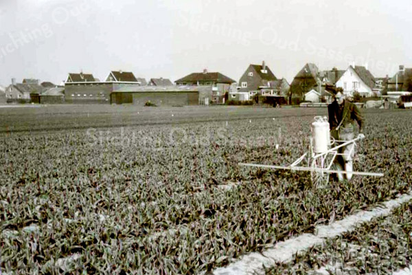 F3502<br /> Wim Kruik aan het werk op de Krocht. Op de achtergrond de achterkant van de huizen aan de Hoofdstraat van Sassenheim noord. Foto: 1970