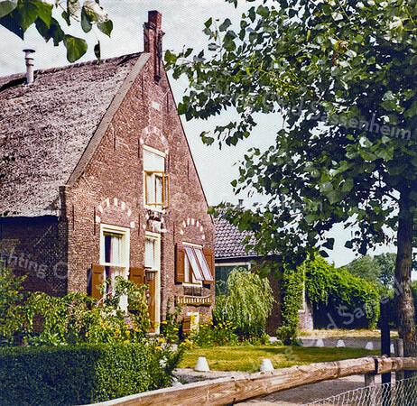 F0062 <br /> De boerderij Schoonewegen, gezien vanuit het zuiden. Op deze foto is ook de bijbehorende schuur te zien, met fraaie beplanting en op de voorgrond de afpaling van de bijbehorende manege. Foto: 1979.