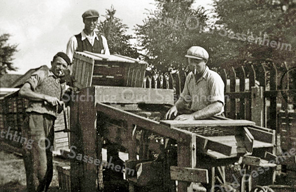 F2323<br /> In de bollen bij Baartman & Koning (?). In het midden staat Jo Stemfoort. Het gezin Stemfoort vertrok later naar Texel, maar keerde in 1956 terug naar Sassenheim. Foto: jaren '30.