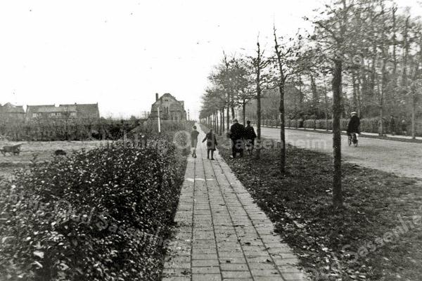 F0338 <br /> De voormalige Beukenlaan (thans Parklaan) gezien in zuidelijke richting. In het gras loopt P. Westerbeek sr. (met hoed op). Op het voetpad loopt links P. Westerbeek jr. en rechts van hem zijn broer Wim. In de verte, links van het voetpad, het huis van Slikkerveer en verder naar links de huizen langs de J.P. Gouverneurlaan. Rechts van de Beukenlaan eerst het park Rusthoff en daarna tussen het geboomte de De Visserschool. Foto: ca. 1928.