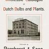 F3904<br /> Een affice van de Bloembollenkwekerij Beerhorst & Co.
