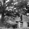 F0748b <br /> Drie verschillende afbeeldingen van boerderij De Oude Hortus van de fam. Van der Meij. Zie ook F0748a en 748c. De boerderij is afgebroken in 1958. Op deze plek is nu de Slotlaan. Foto: ca. 1958.