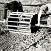 F3911<br /> De plantrol. Twee massieve, ronde houten schijven waren met elkaar verbonden door middel van een stok, die midden door de schijven (wielen) stak. Op de smalle buitenste rand van de schijven waren ongeveer twaalf latten bevestigd. Die latten waren zo lang, dat de schijven aan weerskanten van het bed in het pad stonden.<br /> Aan beide kanten stak een lange stok (= de as) er een stuk uit; zo hadden de landarbeiders allebei een handvat om de rol voor zich uit te duwen.