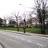F0243 <br /> Kruispunt Charbonlaan/Wilhelminalaan (nu in 2016 Charbonlaan/Willibrorduslaan) voordat het nieuwe gemeentehuis werd gebouwd. Deze westelijke omleidingsweg is een veel gebruikte route, vandaar het parkeerverbod voor beide zijden van de weg. Op de achtergrond de huizen van de Koningshuyswijk. Het open terrein op de voorgrond is de plek waar sinds 1991 het nieuwe gemeentehuis staat. Foto: 1988.