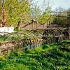 F1810b <br /> De eendenkooi op Warmonds grondgebied.  Op de foto zien we het einde van een vangpijp. Voor overige informatie zie foto F1810a