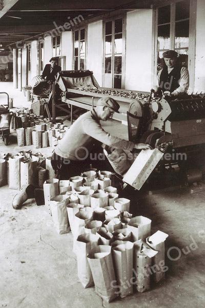 F1177 <br /> Personeel van Gebr. Van Zonneveld & Philippo N.V., bezig met het inpakken van bloembollen bestemd voor de export. De man rechts is Koos de Mooy sr.