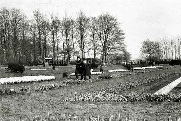 F0349 <br /> Bloembollententoonstelling in de vollegrond voor Het Oude Koningshuys in 1907. Zie ook F0347 en F0348.
