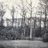 F3340<br /> De vijver bij Huis ter Leede in de jaren '30.