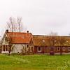 F1969<br /> De boerderij van Willem van Rijn, Hoofdstraat 319 gezien vanuit het noorden. De boerderij is ruim 300 jaar oud en is 'op staal'; dit betekent dat het pand zonder fundering op zand is gebouwd. Dat kon omdat het huis op de westelijke strandwal van Sassenheim staat. De bollengrond er omheen is verkocht en daar is de nieuwe wijk Overteylingen gebouwd. Foto: 2001.