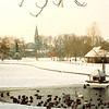 F4373<br /> Het park Rusthoff in de winter. Op de achtergrond de r.-k. kerk St.Pancratius.