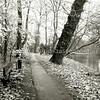 F2485<br /> De zuidkant van park Rusthoff te Sassenheim. Foto: 2001