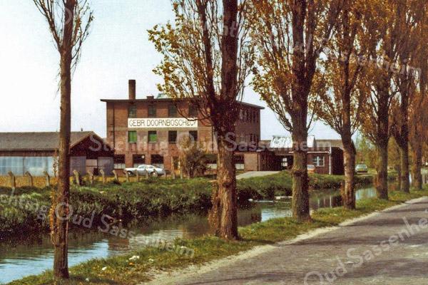 F3225<br /> De bollenschuur van de Gebr. Doornbosch & Co N.V. aan de Postwijkkade. Dit bedrijf heeft plaats moeten maken voor huizenbouw in de Postwijk in 1984.
