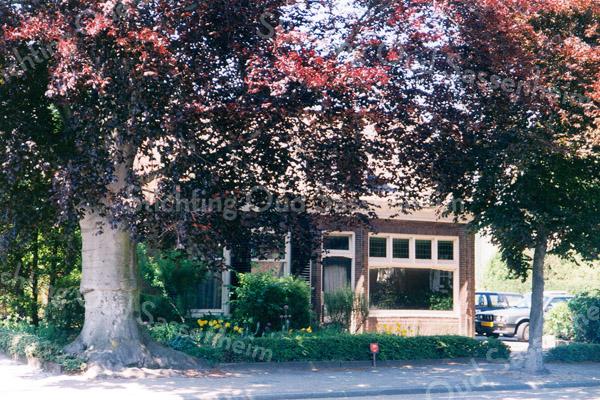 F0160 <br /> Onder een mooie, rode beuk zien we het voormalige pand van de dames Roosa van de kruidenierswinkel, gelegen aan de Hoofdstraat, nr. 139. Dit huisje is omstreeks 1820 gebouwd. Vroeger was hierin een kerkje en de kosterswoning gevestigd van de voormalige Chr. Afgescheiden Gemeente (Gereformeerde Kerk) in de jaren 1863-1876. Daarna werd een groter gebouw in gebruik genomen, de latere werkplaats van Kistenfabriek M. Bakker (Hoofdstraat 137A). Hij kocht ook het huisje op de foto. De rode beuk links is samen de andere beuk  (niet op de foto) rond 1870 door de toenmalige koster H.J. Brinkerhof geplant. Eind 1997 is het huisje afgebroken. Foto: 1996.