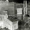 F3973<br /> De stand van Theo Matze op de mechanisatie tentoonstelling van 1960 in Lisse, waar naast alle mechanische noviteiten ook artikelen voor de verpakking van bollen werden geshowd. Let op het karpet wat hier de stand extra aankleedt, dat was afkomstig uit de huiskamer van het gezin Matze. Op deze foto zijn ook de zogenaamde showkisten te zien, een uitvinding van Theo Matze, die al snel gekopieerd werden door zijn collega's. Foto: 1960