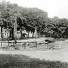 F0440 <br /> Gezicht op de Oude Haven in noordelijke richting. Het witte pand rechts onder de bomen werd later drogisterij Melman en nu al vele jaren de Digros. Links de toenmalige Hoofdstraat. Foto: 1906.