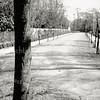 F3920<br /> De Elbadwarslaan in de richting van het einde van de laan, met toegang naar het eilandje Elba (zie ook Elbalaan). Foto: 1937/38.