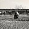 F3624 <br /> Het viaduct aan de Van Pallandtlaan. Foto: ca 1960