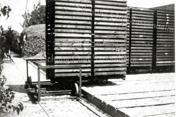 F0555b <br /> Het bollenbedrijf van Oostveen. Oostveen was de eerste en de enige gebruiker van het systeem van stellingwagens met gaasbakken op een tuinspoor. Zo werden de wagens naar binnen gereden in een schuur van 15 x 30 meter. Er konden 16 karren in. Foto: jaren '30.