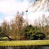 F4340<br /> Het nieuwe ooievaarsnest in park Rusthoff. Het nest staat op de plaats waar het oude ooievaarsnest heeft gestaan, op het eilandje midden in het park. Foto: 2002