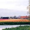 F0524 <br /> Het gebied Klinkenberg met de boerderijen van Koot op de voorgrond en van Ciggaar op de achtergrond. Gezien vanaf de kromming in de Dinsdagsche Wetering over de bloeiende bollenvelden. Rechtsachter het geboomte ligt de A44. Foto: 1998.