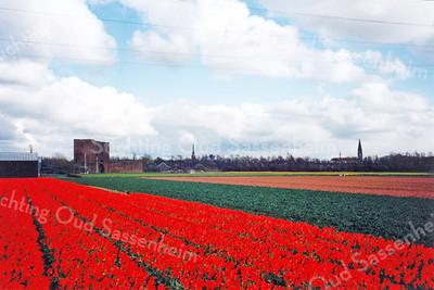 F0045 <br /> Gezicht op Sassenheim vanaf de Frank van Borselenlaan. Links het silhouet van de ruïne van Teylingen, verder de Ned.-herv. kerk (Dorpskerk) en de r.k.-kerk St.Pancratius. Foto van april 1995.