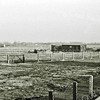F3328<br /> Hetzelfde punt als F3327 in begin de jaren '50 toen het nog een lege polder was. Het schuurtje is van Zandbergen die daar plantjes kweekte o.a. ook edelweiss.  Later werd dit stuk land gebruikt door gebroeders Schrama, ook voor planten en bloemen. Tot in 1960 hier gestart werd met de nieuwbouw voor Hygia. Nu is deze oppervlakte geheel volgebouwd met woningen