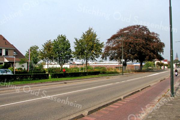 F2979<br /> Waar de bollenschuren van Fred de Meulder en het dubbele woonhuis (Twin's Home) zijn verdwenen. Op de foto zien we nu links van de twee rode beuken een bouwterrein t.b.v. het Plan Bakker. Links de laatste huizen aan de Postduif. Foto: 2012