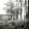 F0467 <br /> Stoomwasserij Hollandia aan de Teijlingerlaan van de fam. Van Niekerk, voorheen de melkfabriek van de fam. Gerrits, bij de oude schuur van Reckman. Rechts het huis waar nu (2016) L. Bontje woont.