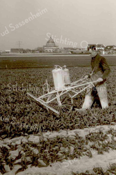 F3501<br /> Wim Kruik aan het werk op de Krocht. Op de achtergrond is de Engelenkerk te zien. Foto: 1969