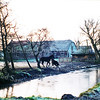 F0098 <br /> Een foto van de boerderij van Wim van Rijn in de winter 1997/98 met merrie en veulen. Foto: 1998.