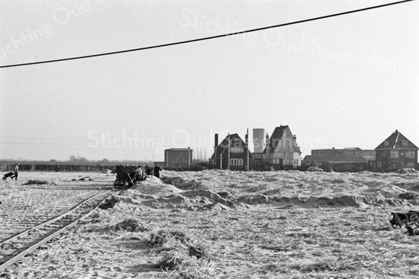 F3815<br /> Een serie foto's van de Ned. Heidemaatschappij en het betreft diepdelven en andere grondwerkzaamheden op het land tussen Twins Home en Beukenrode, dus aan de westzijde van de Hoofdstraat. <br /> Op sommige foto's staat een kleine witte bollenschuur, die waarschijnlijk van Van Egmond was.<br /> Op sommige foto's is de molenstomp, de watertoren, de r.-k. kerk St.Pancratius, Twins Home en de bollenschuur van Van der Voort te zien. Foto: 1950
