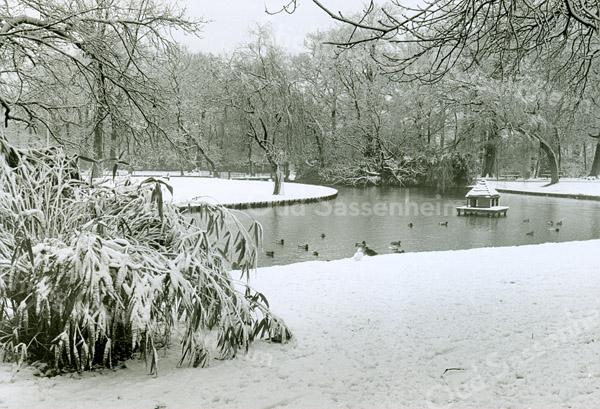 F2477<br /> Park Rusthoff, gelegen in het centrum van Sassenheim in wintertooi. Foto: 2001.
