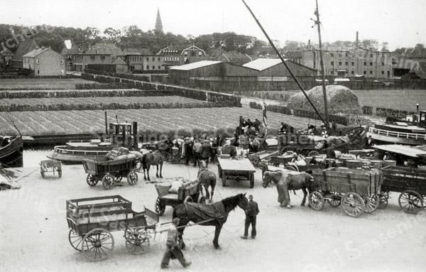 F0668 <br /> Bedrijvigheid aan de Oosthaven in vroeger jaren met nog veel vervoer met paard-en-wagen. In het water verscheidene binnenvaartschepen. Op de achtergrond bollenvelden met een rietschelft. Links boven is het eerste huizenblok verrezen langs de Bijweglaan-in-wording. Rechts de houttuin van de fa. M. Bakker & Zn., de bollenschuren van L. v.d. Voet, Aangeenbrug, Vlasveld en B.D. Kapteyn & Zn. C.V. Verder de huizen langs de Kerklaan en de chr.-geref. kerk (links op de foto).  Deze foto is waarschijnlijk tijdens de Tweede Wereldoorlog genomen.  Vrachtwagens waren toen in beslag genomen door de Duitsers; daarom was er veel vervoer met paard-en-wagen.