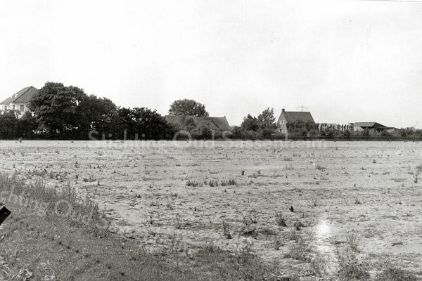 F1299 <br /> Links op de foto staat villa Beukenrode, eerst bewoond door P. Krouwel, en later door de fam. J. Bader. Het land op de voorgrond ligt tussen Beukenrode en villa Twins Home. Op dit land verrees later een gedeelte van de Postwijk. Foto 1920.