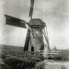 F0443 <br /> De Bonte Krielmolen in Lisse, ingeklemd tussen de 3e Poellaan (bij het bruggetje) en de grens Lisse/Sassenheim. De molen sloeg het water van de Bonte Krielpolder uit op de ringsloot van de Lisserpoelpolder. De molen werd vermoedelijk in 1795 gebouwd en genoemd naar Cornelis Willemsz. Bonteman Wassenaar (1540). De laatste molenaar was Vis. In ca. 1925 is de molen afgebroken en een stukje zuidelijker (op Sassenheims grondgebied) vervangen door een windmotor. In 1969 werd deze weer vervangen door een elektrisch gemaaltje, vlakbij de plaats waar de Bonte Krielmolen had gestaan, en later door een moderner gemaal. <br /> De foto is gemaakt door August F.W. Vogt. Foto: 1906.