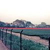 F2631<br /> Bollenvelden met daarachter villa Beukenrode aan de Hoofdstraat. Hier werd later o.m. de Vliegeniersweg aangelegd. Foto: 1978.