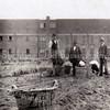 F3436<br /> Arbeiders op het bollenland van Zonneveld & Philippo (Z&P).